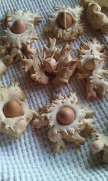 tradizione culinaria in sardegna e i prodotti in pula