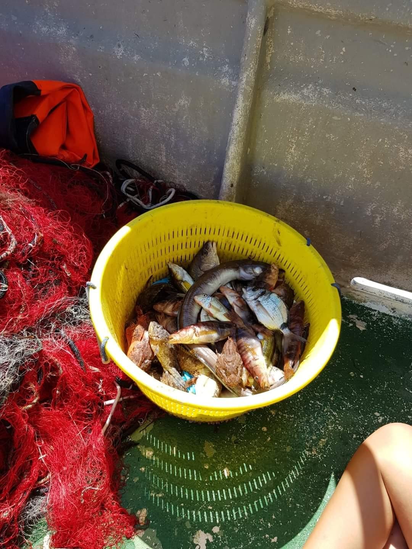 il pescato di una giornata pescaturismo