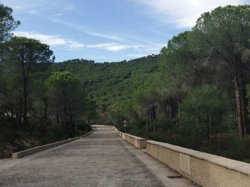 pineta pula crs4 centro ricerche Sardegna